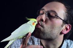 鸟亲吻人 免版税库存照片