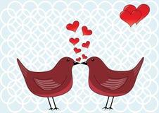 鸟亲吻 库存照片
