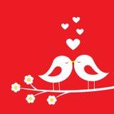 鸟亲吻-浪漫卡片为华伦泰` s天 向量例证