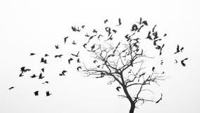 鸟从象叶子的树飞行由风 免版税库存照片