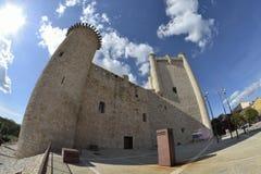 鸟入城堡通过全天相镜头 免版税库存照片