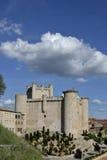鸟入城堡,西班牙 免版税库存照片