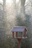鸟冻结的房子 免版税库存照片