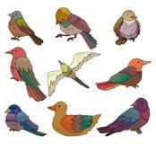 鸟动画片图标 图库摄影