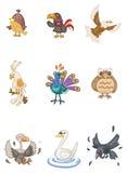 鸟动画片 免版税图库摄影