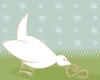 鸟吃肥胖蠕虫 库存图片