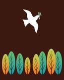 鸟和平 免版税库存照片