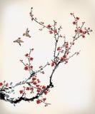 鸟和腊梅 免版税库存照片