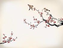 鸟和腊梅 免版税库存图片