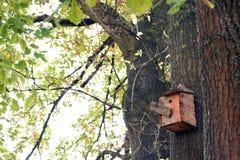 鸟和鸟房子巢树的 图库摄影
