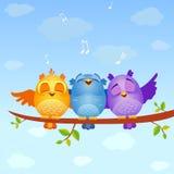 鸟唱歌 向量例证