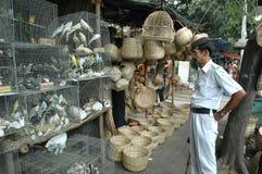鸟商业印度 免版税库存图片