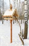鸟喂食器 免版税库存图片