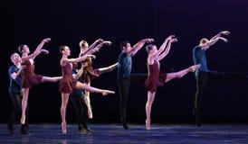 鸟图腾古典芭蕾` Austen汇集` 免版税图库摄影