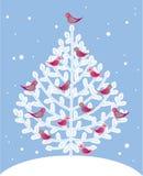 鸟圣诞节红色结构树 库存图片