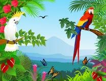 鸟在美丽的森林里 图库摄影