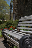 鸟坐长凳 免版税库存图片