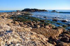 鸟岩石处于低潮中海斯勒公园 海滩加利福尼亚寒冷的拉古纳 免版税库存图片