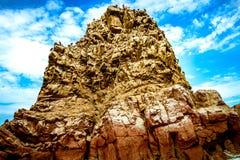 鸟岩石 免版税图库摄影