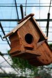 鸟巢木头 库存照片