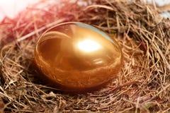 鸟巢用在木头,复活节的传统被绘的金黄鸡蛋 免版税库存图片