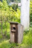 鸟庭院房子 免版税库存图片