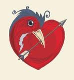 鸟心脏 库存图片