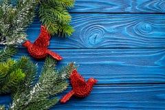 鸟戏弄装饰新年庆祝的圣诞树与毛皮在蓝色木背景上面veiw的树枝 免版税库存照片