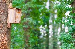 鸟房子,树 免版税图库摄影