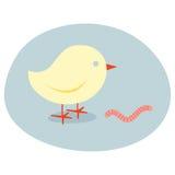鸟捉住早期的蠕虫 库存照片