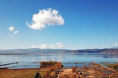 鸟景色领域在与金黄树的秋天 免版税库存图片