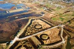 鸟景色领域在与金黄树的秋天 库存图片