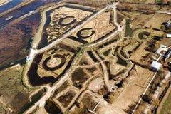 鸟景色领域在与金黄树的秋天 免版税库存照片