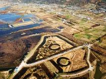 鸟景色领域在金黄秋天 库存图片