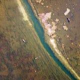 鸟景色领域在金黄秋天 免版税图库摄影