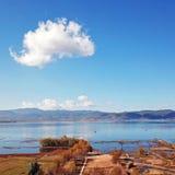 鸟景色领域在金黄秋天 库存照片