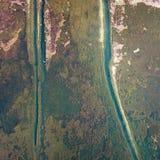 鸟景色领域在金黄秋天 免版税库存照片
