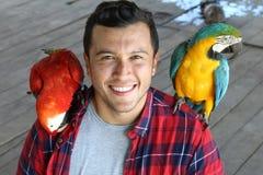 鸟更加温驯与两只金刚鹦鹉一起使用 免版税库存照片