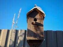 鸟木鸟舍的家在篱芭 免版税库存图片