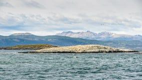 鸟海岛,小猎犬海峡,乌斯怀亚,阿根廷 库存图片