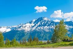 鸟点,阿拉斯加 免版税库存图片