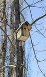 鸟的冬天房子 免版税库存图片