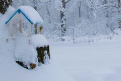 鸟的冬天饲料 在冬天饲养者的北美山雀五子雀 免版税库存照片