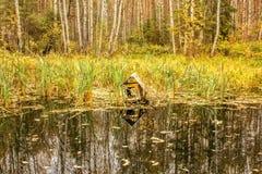 鸟的木房子在森林秋天湖的水 免版税库存照片