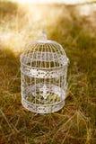鸟的笼子 免版税库存照片