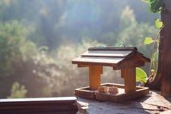鸟的饲养者与面包片 库存图片