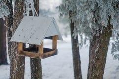 鸟的饲养者在冬天森林里 库存图片
