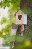 鸟的鸟舍房子 免版税库存照片