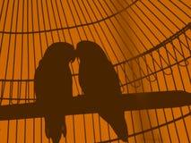 鸟看板卡夫妇构成邀请s华伦泰葡萄酒 免版税库存图片