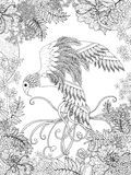 鸟着色页 图库摄影